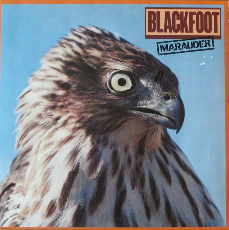 Blackfoot-Marauder-ATCO-Records-Vinyl-LP-Schallplatte-OIS-Germany-1981